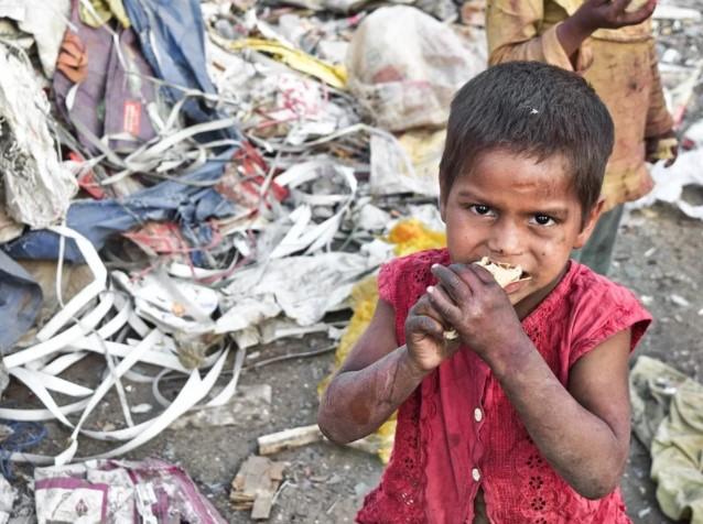 hungry india report